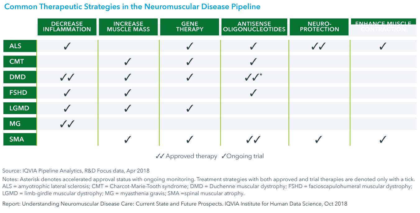 Chart 19: Common Therapeutic Strategies in the Neuromuscular Disease Pipeline